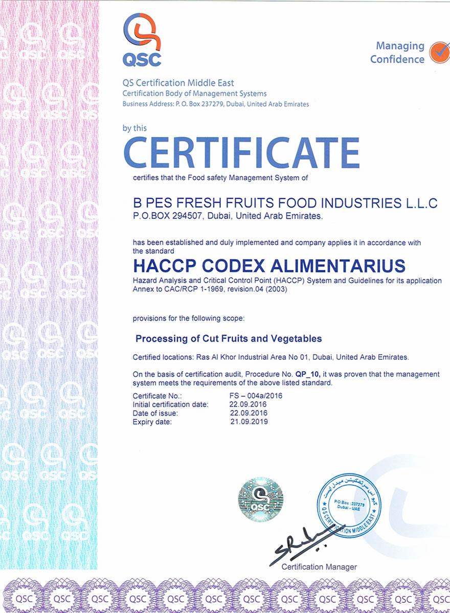 Certificate B Pes